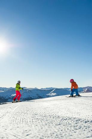 Ski©Franz_Gerdl.jpg