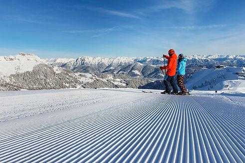 Ski_alpin.jpg