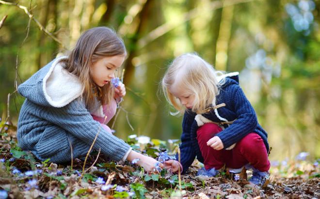 Scoprire la natura. Una scelta obbligata per un futuro migliore