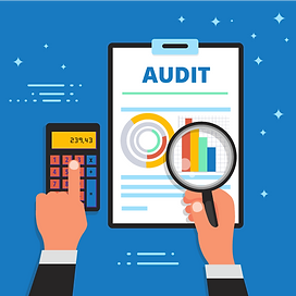 Internal Audit, Supplier Audit