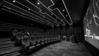 SCREENING ROOMS & THEATERS