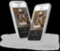 Mobile Responsive Restaurant Website Design