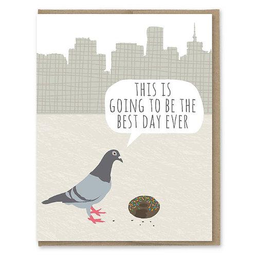 Pigeon Birthday Card
