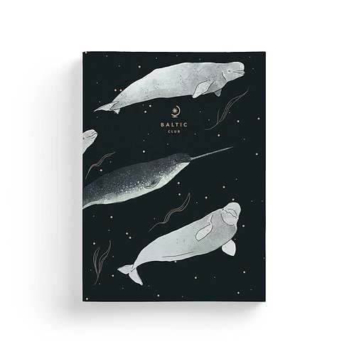 Beluga and Narwhals Notebook