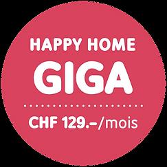 HH_GIGA_Stoerer_129_f.png