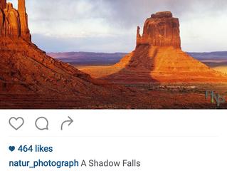 A Shadow Falls, 2016