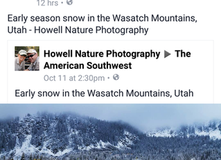 Early Snow in the Wasatch, 2016