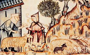 Churras y merinas: la demanda de lana multiplica la cabaña ovina