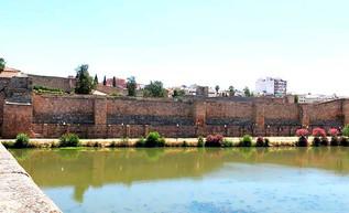 Alfonso IX de León acelera; entra en Mérida, Badajoz y Elvas; Córdoba y Sevilla a la vista