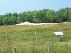 dune foss.1