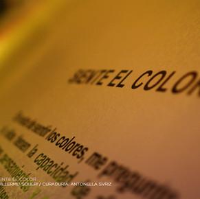 """Se inauguró """"Siente el Color"""" de Guillermo Squeri."""