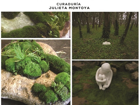 """Se inauguró """"Muestra Verde"""" de Ariel Montagnoli y Aili Chen."""