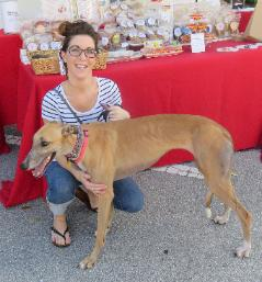 Cassie_and_Jillian_greyhound-239x257