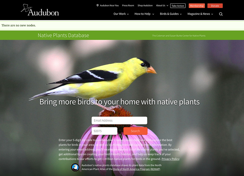 Audubon Native Plants Search