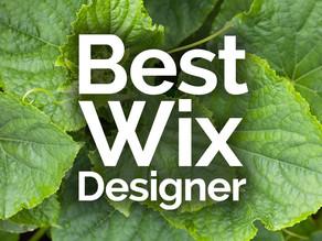Wix Designer Freelancer
