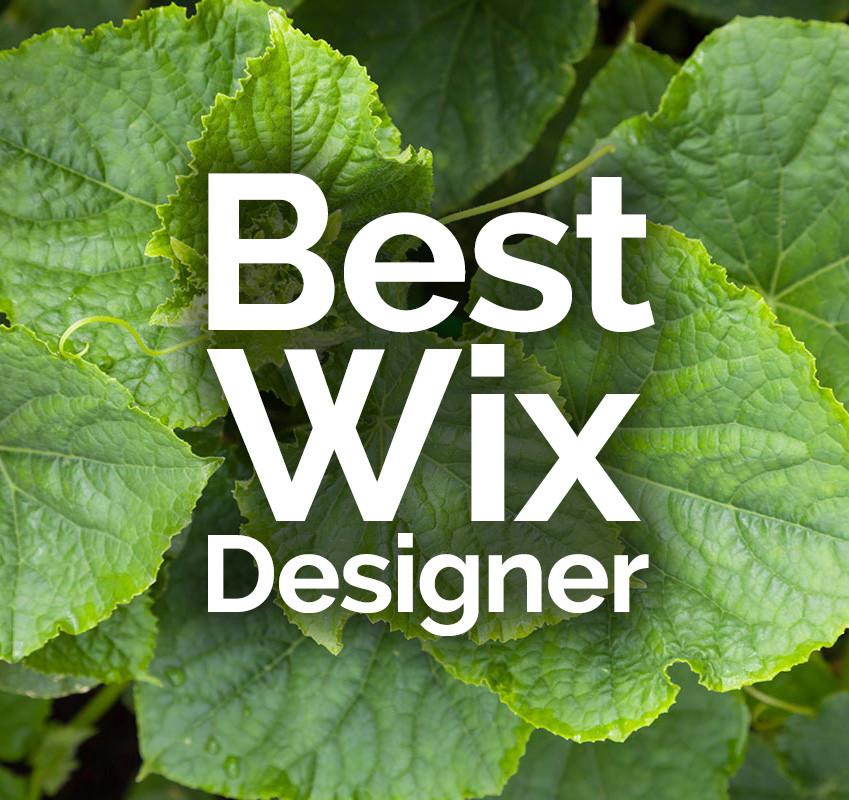 Wix Designer Freelancer - the Best Wix Designer