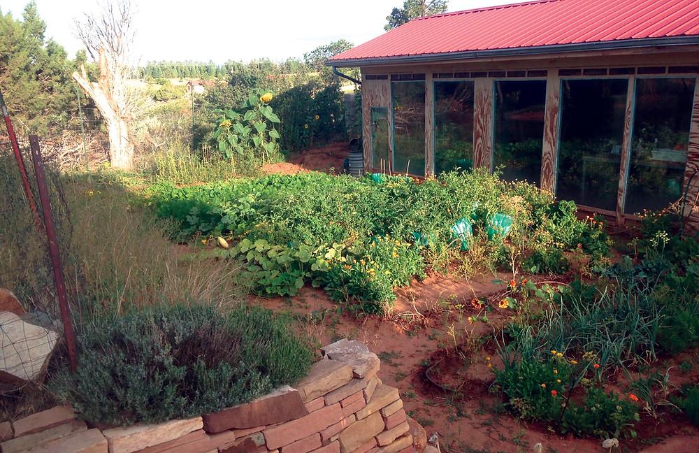Dirt as Mulch in Colorado Gardener