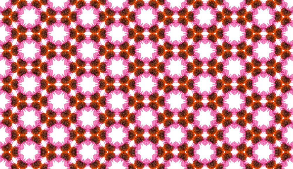 Web Designer Tip: Pattern Maker – Echinacea flower pattern