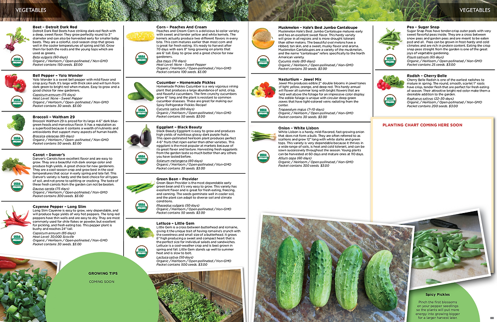 Product Catalog Design for 2021 Seed Catalog