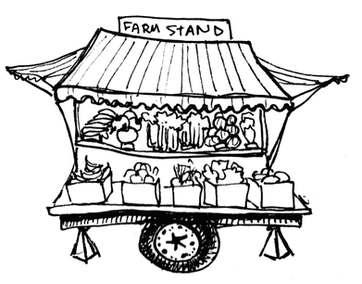 Farm Stand Illustration - Pen & Ink