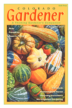 Editor's Letter: Harvest 2017