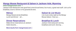Wix Designer Tip – SEO - Sitelinks in Google example