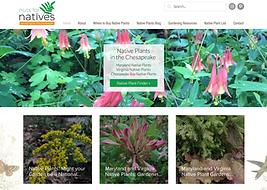 Blog Website Designer for Nuts For Natives