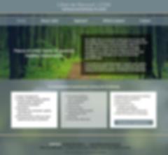 Denver Website Designer for Psychotherapist