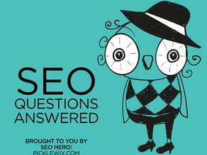 Wix SEO Hero Questions