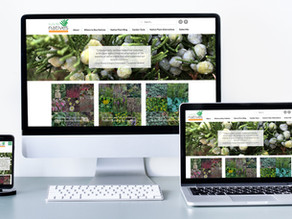 Garden Website Templates
