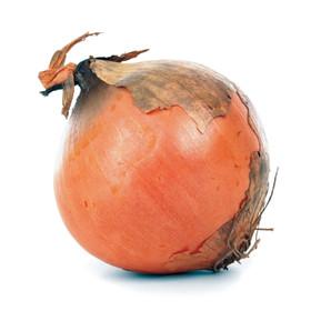 Small Onions