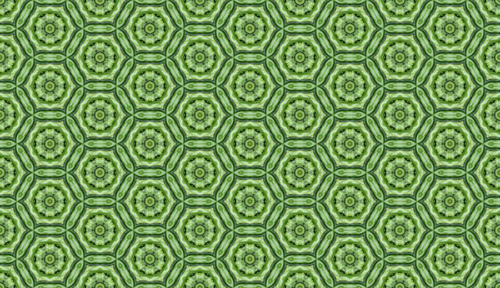 Web Designer Tip: Pattern Maker – Green Seamless Pattern