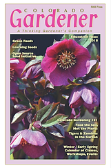 Education Issue 2018