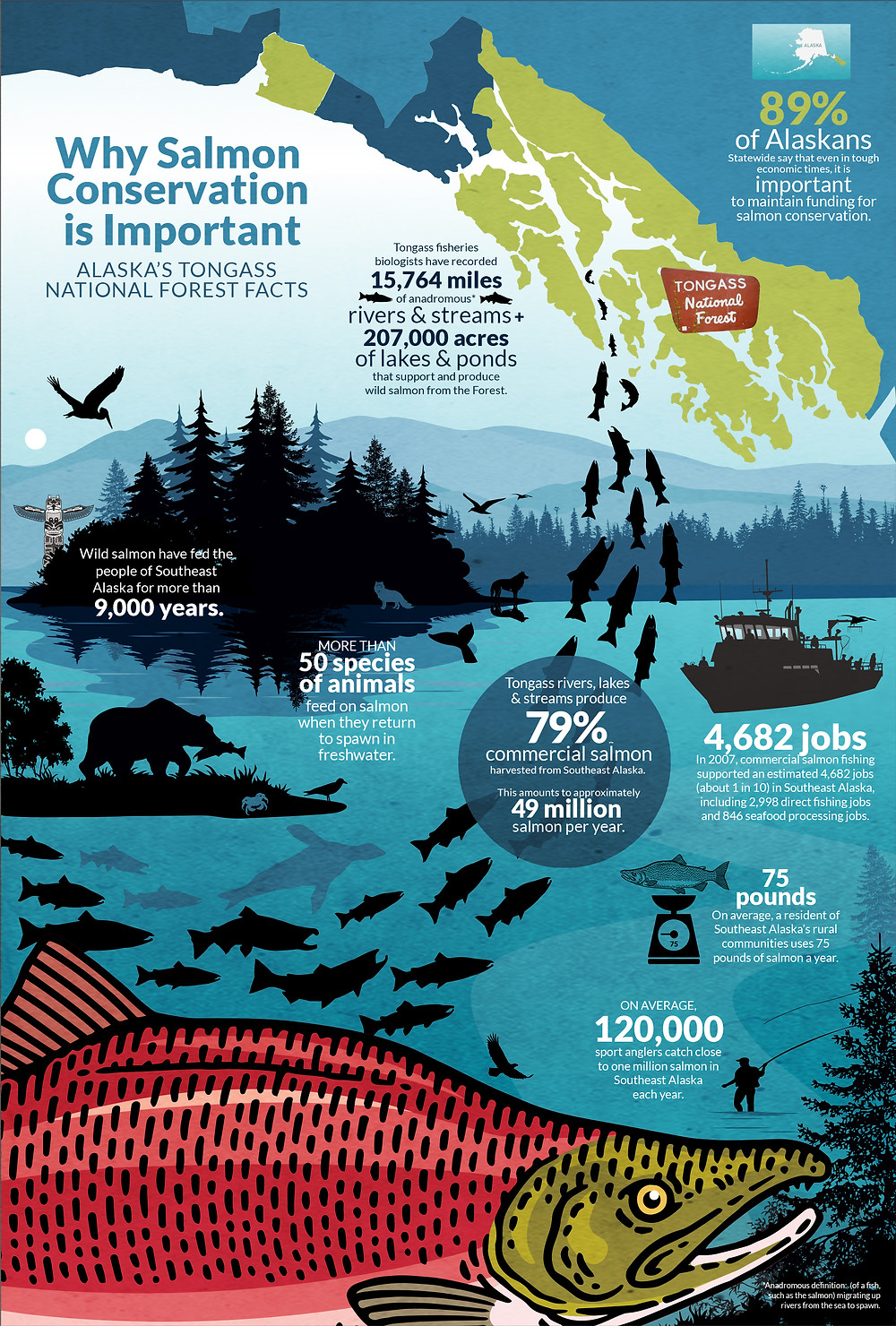Infographic Designer for Conservation