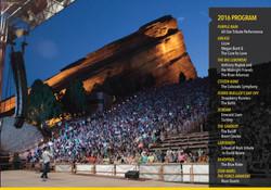 Annual Report Designer for DFS