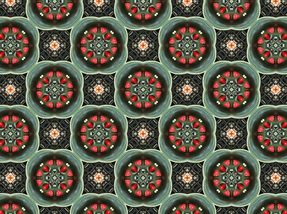 Web Designer Tip: Pattern Maker –  Seamless Pattern with Peppers