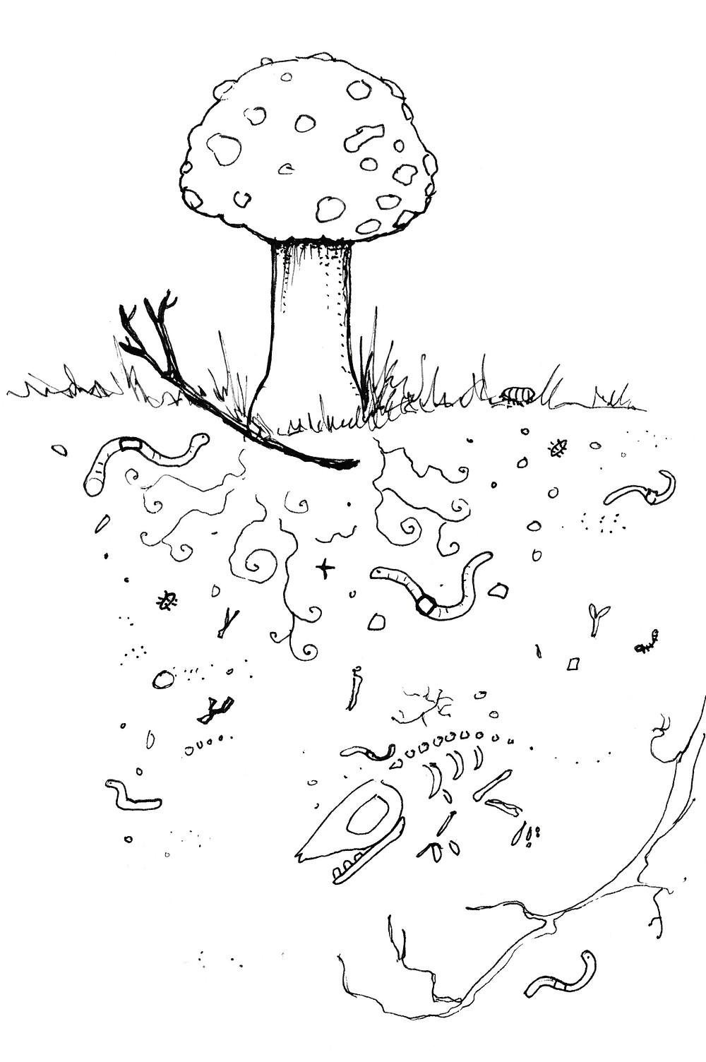 Mushroom and Soil- Garden Illustration by Idelle Fisher