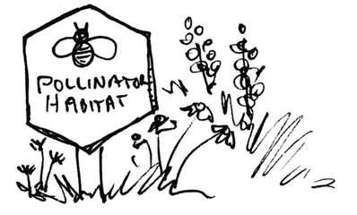 Pollinator Habitat Illustration