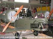 Aviator_Gotha3 (1).jpg