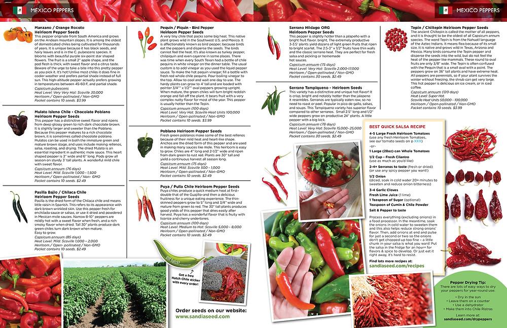Seed Catalog Designer - Inside spread for Sandia Seed