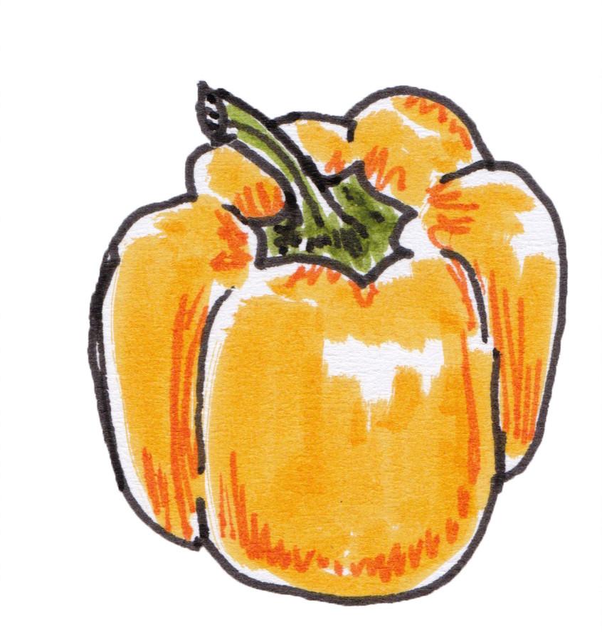 Vegetable Garden Illustration - Yellow Bell Pepper