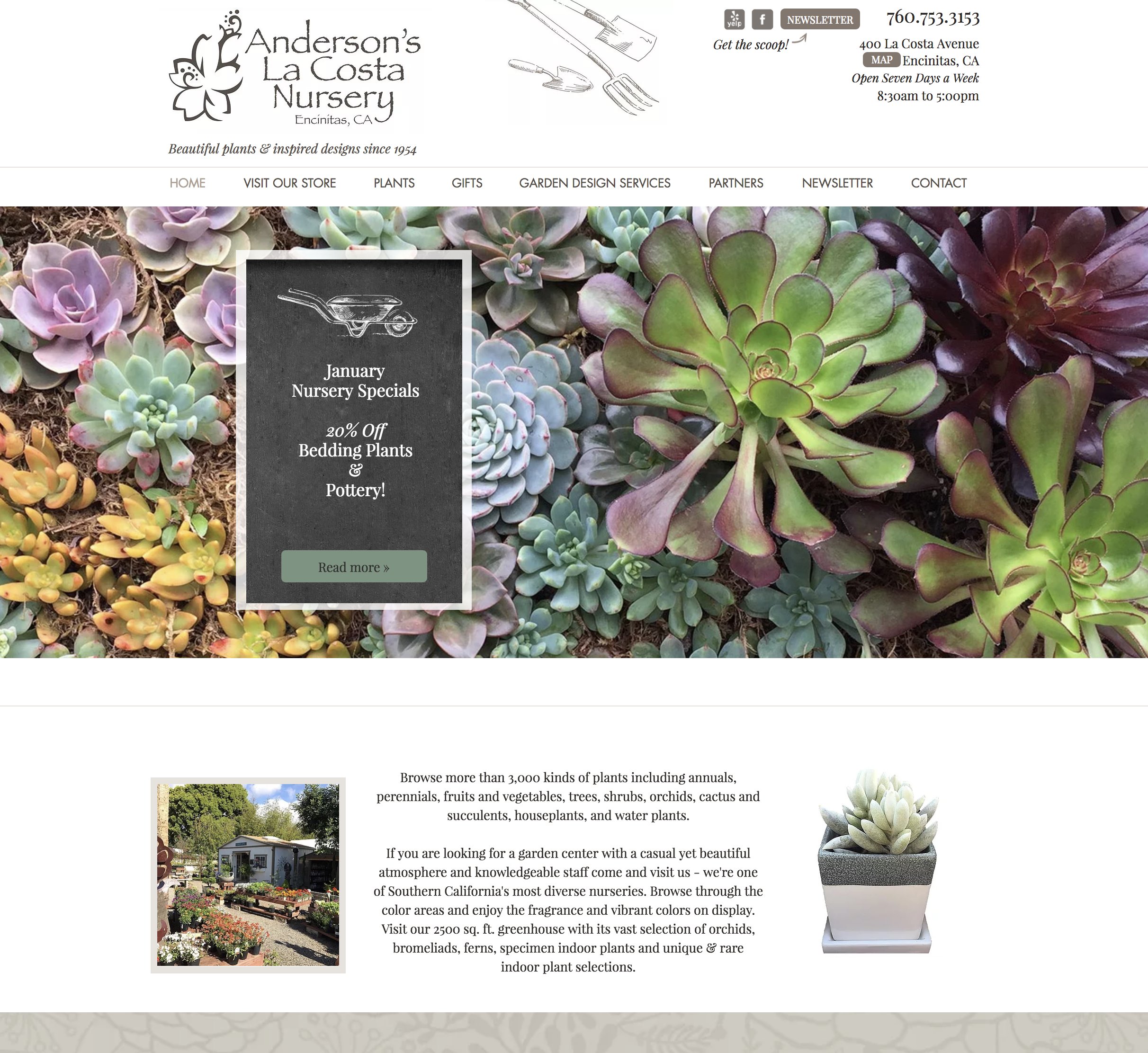 Website Design for Garden Nursery