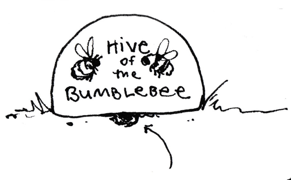 Bumblebee Hive - Garden Illustration by Idelle Fisher