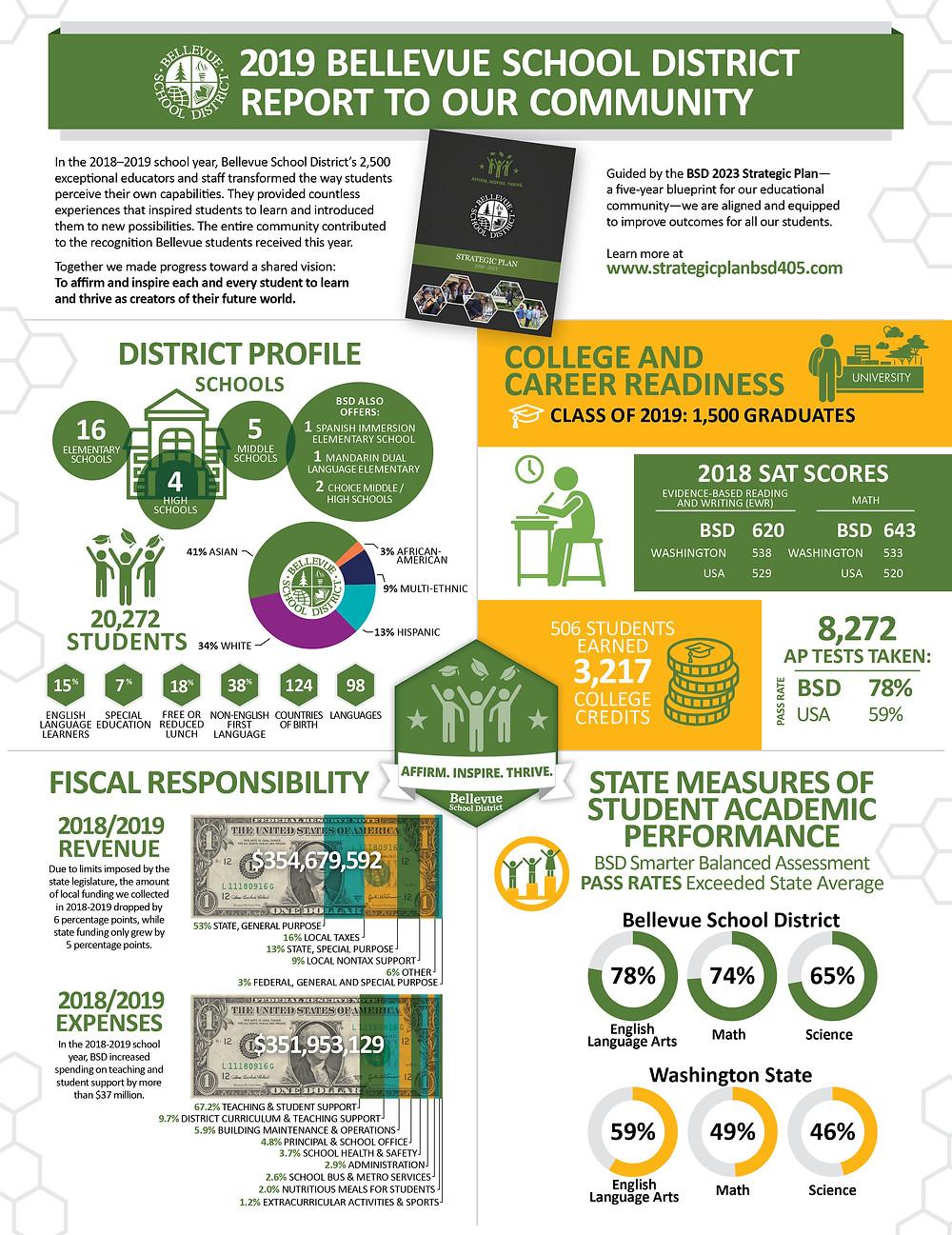 Infographic Illustrator - School Infographic Design