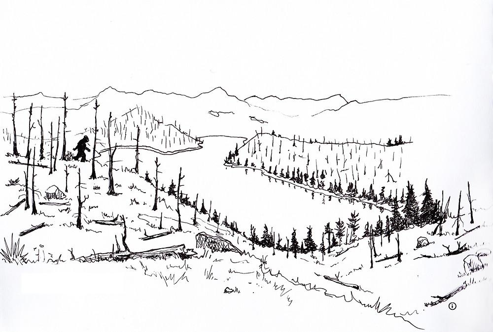 Cheesman Canyon Sasquatch Illustration