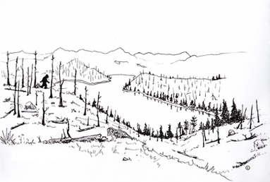 Cheeseman Canyon Sasquatch