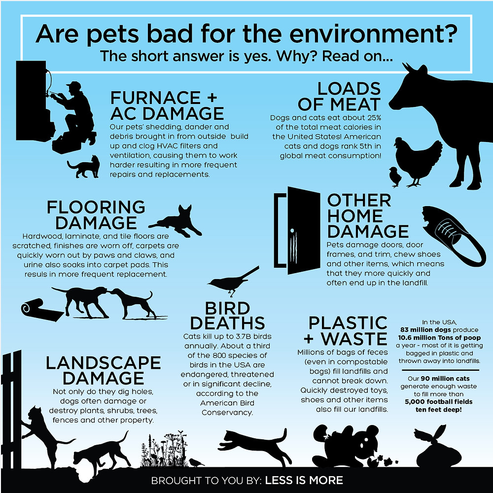 Are pets bad for the Environment?