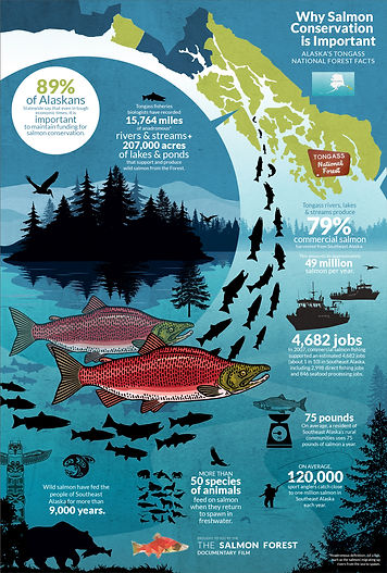 Salmon-Forest-Infographic-A.jpg