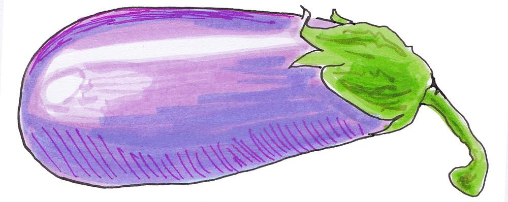 Vegetable Garden Illustration - Eggplant