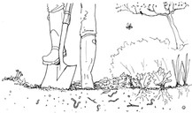 Garden Illustration - Digging in soil
